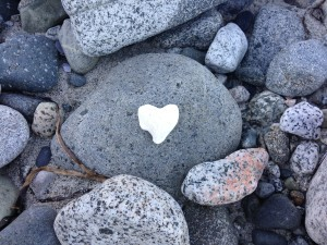 IMG_0520-ROCKS w WHITE HEART