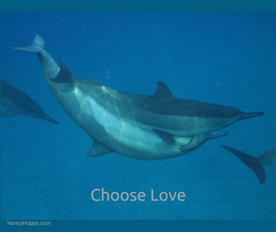 choose-love-final